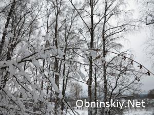 Зимний Обнинск