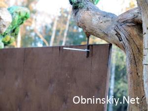 В Гурьяновском лесу доска на стяжках
