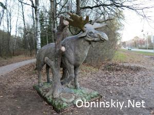В Гурьяновском лесу, фигрука лося. Лось страж этого леса
