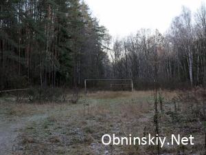 В Гурьяновском лесу старое заброшенное футбольное поле и ржавые ворота