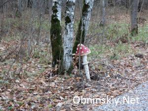 В Гурьяновском лесу фигурка мухомора. Фигурку плохо установили - качается