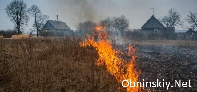Пал травы: опасность и ответственность