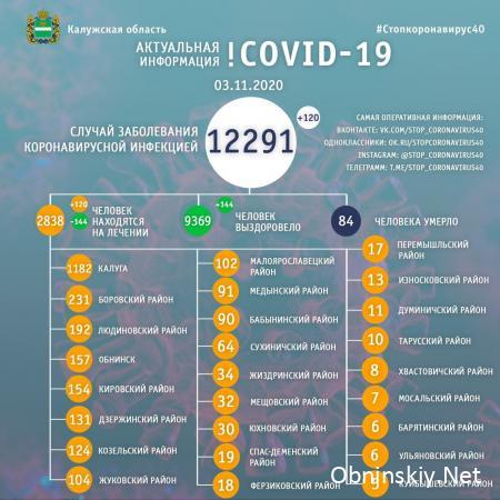 Количество заболевших коронавирусом в Калужской области 03.11.2020
