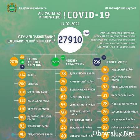Количество заболевших коронавирусом в Калужской области 13.02.2021