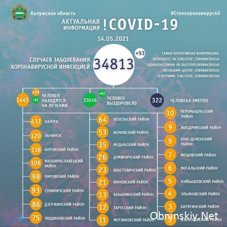 Количество заболевших коронавирусом в Калужской области 14.05.2021