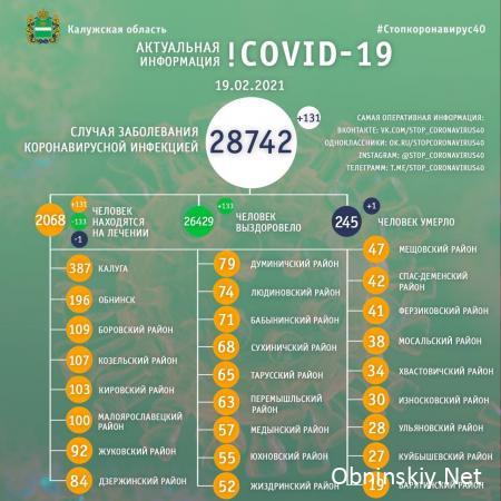 Количество заболевших коронавирусом в Калужской области 19.02.2021