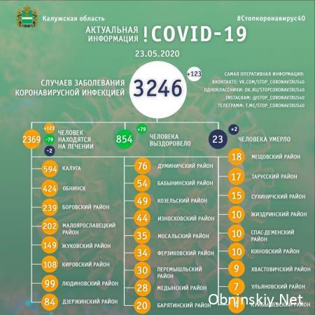 Количество заболевших коронавирусом в Калужской области 23.05.2020