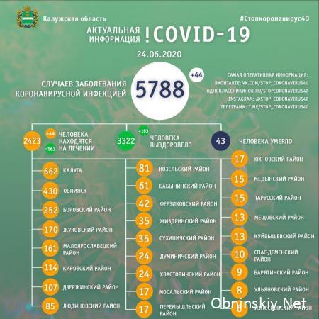 Количество заболевших коронавирусом в Калужской области 24.06.2020