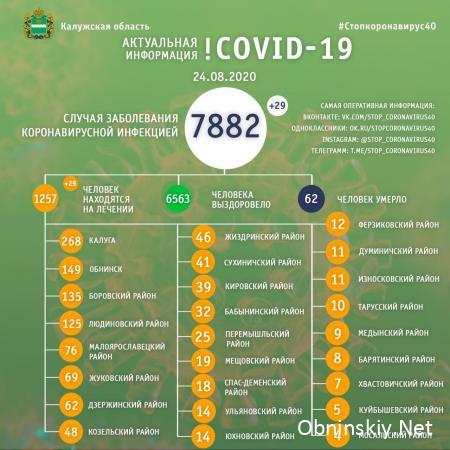 Количество заболевших коронавирусом в Калужской области 24.08.2020