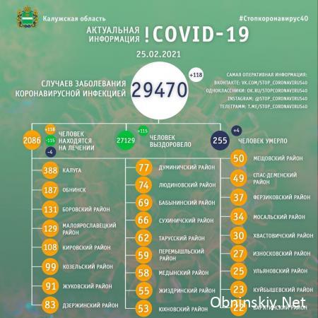 Количество заболевших коронавирусом в Калужской области 25.02.2021