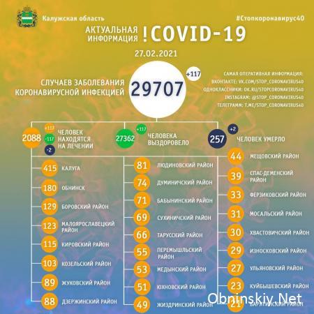 Количество заболевших коронавирусом в Калужской области 27.02.2021