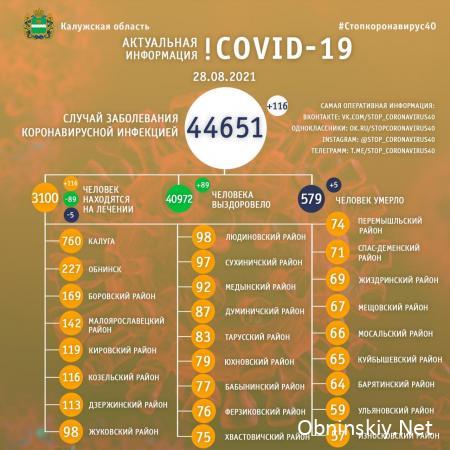 Количество заболевших коронавирусом в Калужской области 28.08.2021