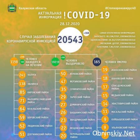 Количество заболевших коронавирусом в Калужской области 28.12.2020