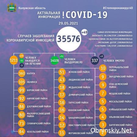 Количество заболевших коронавирусом в Калужской области 29.05.2021