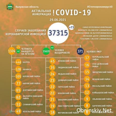 Количество заболевших коронавирусом в Калужской области 29.06.2021