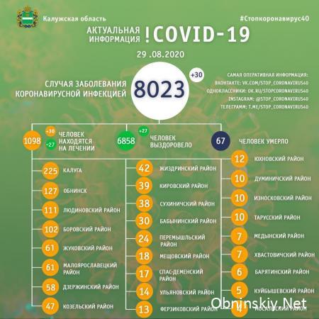 Количество заболевших коронавирусом в Калужской области 29.08.2020