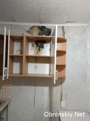 Чёрная плесень в комнате жильцов