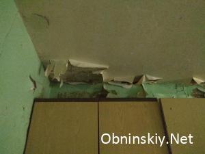 Чёрная плесень на стене в местах общего пользования