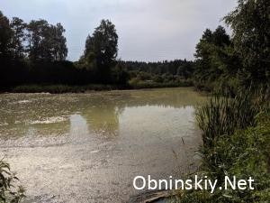 """Загрязнение реки Дырочная СНТ """"Электрон"""""""