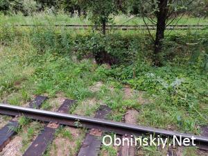 Новые шпалы - чёрная, а значит рядом в траве виднеются старые брошенные шпалы