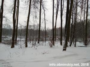 Вырубка леса 21.01.2018 под строительство дома